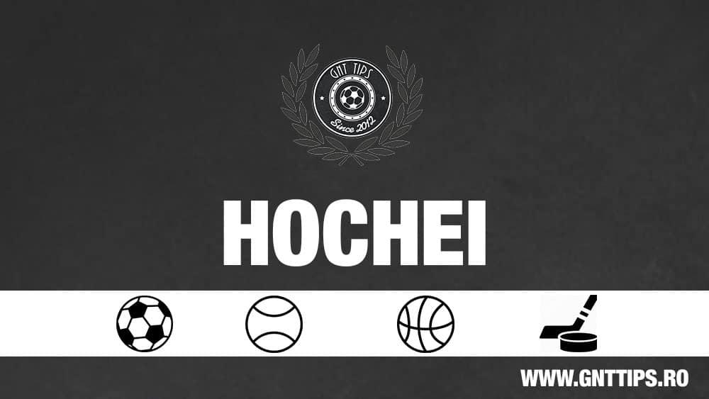 Ponturi Hochei